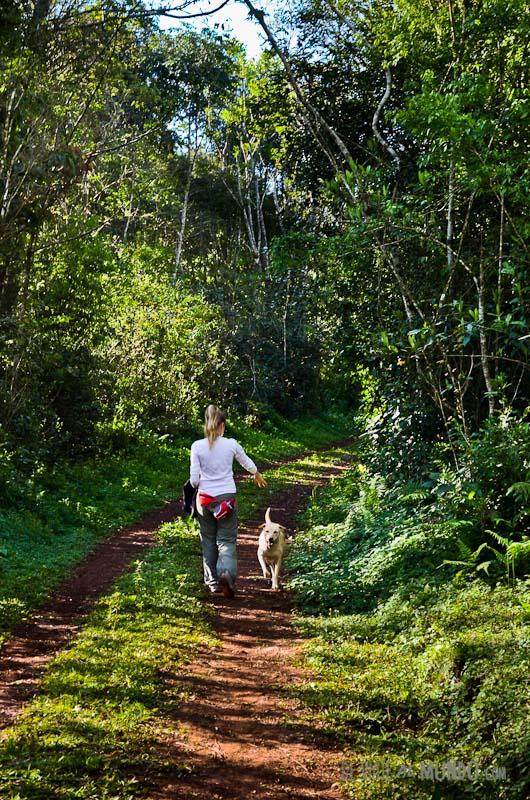 posada-guatambu-paseos